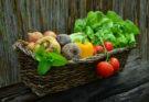 Hortalizas y verduras